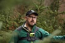 Hajní Správy KRNAP vyrazili do krkonošských lesů vyřezat mladé ekostromky, které se budou prodávat 17. prosince ve Vrchlabí.