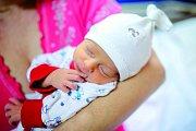 DOMINIK DOLEŽAL se narodil 26. listopadu v 8.55 hodin rodičům Zuzaně a Jaroslavovi. Vážil 2,41 kg a měřil 46 cm. Spolu se sestřičkami Lucií, Andreou a Barborou bydlí v Kunčicích n. Labem.
