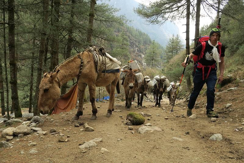 Vrchlabský horolezec Radoslav Groh považuje prvovýstup na himálajskou sedmitisícovku Baruntse za nejtěžší, nejriskantnější a psychicky nejnáročnější výpravu kariéry.