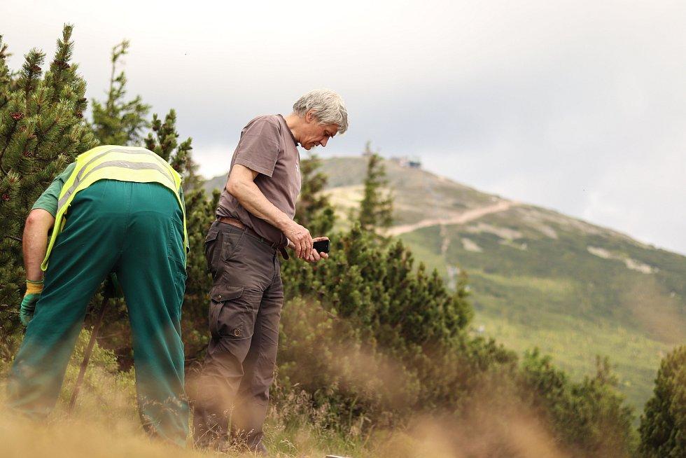 V pondělí začala oprava přístupové trasy na vrchol Sněžky z Růžové hory.