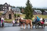 U KAPLIČKY SV. FRANTIŠKA u Erlebachovy boudy v nadmořské výšce 1150 m jezdil při nedělní pouti  i kočár s koňmi.