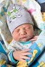 BOŘEK DOLEŽAL se narodil rodičům Marice a Radkovi 7. února v 18.16 hodin. Vážil 4, 2 kilogramu a měřil 53 centimetrů. Rodina bydlí v Jilemnici i s bráškou Čendou.