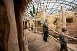 Safaripark Dvůr Králové nad Labem? Zoo v sezoně láká hlavně na nový výběh pro gepardy a nové pavilony.