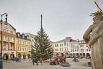 Vánoční strom na Krakonošově náměstí
