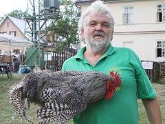 Nejkrásnější kohout v Kohoutově. Plymutka žíhaná chovatele Miloslava Hertla ze Stanovic je nejhezčím kohoutem okresu Trutnov. Vybrali ho návštěvníci sobotních Lidových řemesel v Kohoutově.