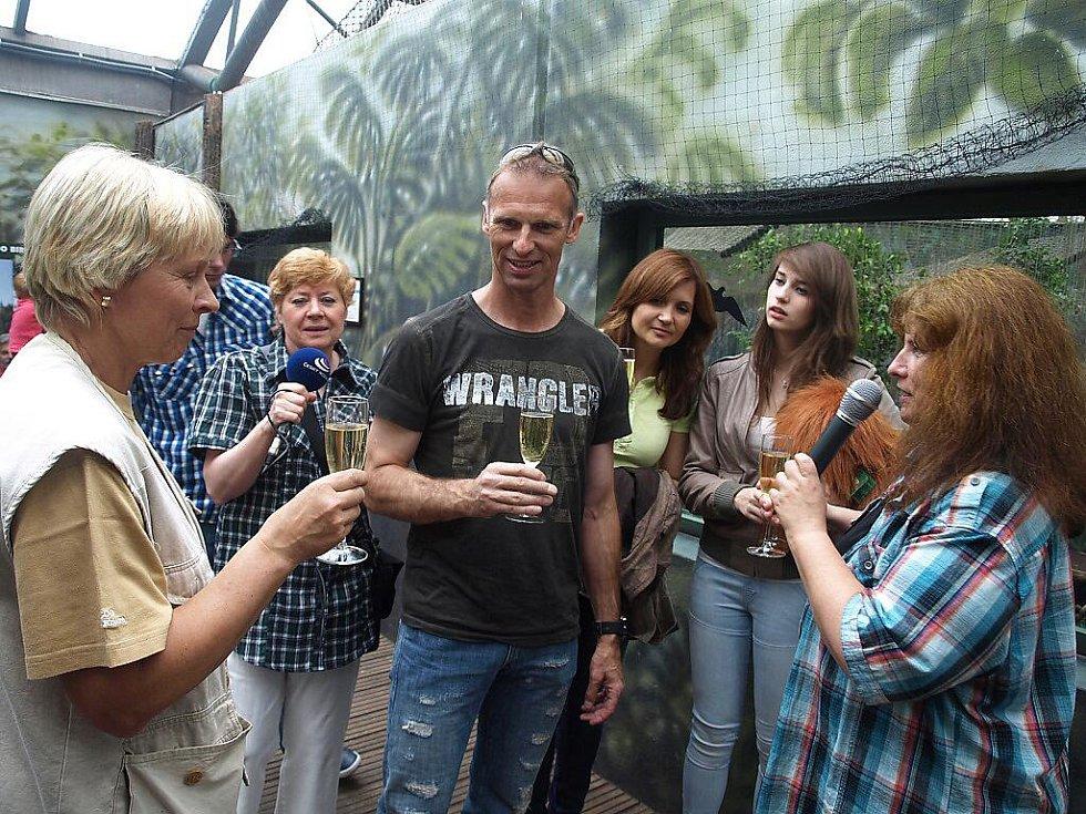 Křtiny orangutana v královédvorské zoo, kmotrem byl Dominik Hašek