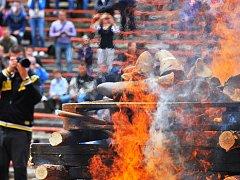 V královédvorské zoologické zahradě spálili 50 kilogramů rohoviny. Na černém trhu by měla cenu přes 100 milionů korun
