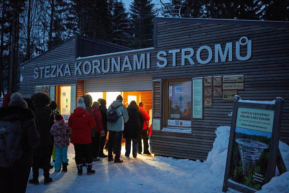 Stezka korunami stromů Krkonoše v Janských Lázních nabízí návštěvníkům speciální prohlídky s průvodcem.