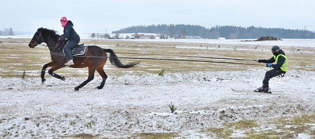 DENISA VAŇKOVÁ, jezdkyně  ze stáje Teri zHorního Lánova a lyžař Čeněk Jon si vMartinicích vyjeli nejvyšší příčku vzávodech horseskijöringu.