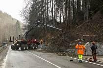 Těžaři Správy KRNAP pracují na likvidaci rizikových stromů podél silnice mezi Vrchlabím a Špindlerovým Mlýnem.