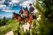 Strážci na koních v létě pomáhají turistům