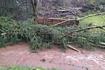 Požární jednotka Rudník-Arnultovice vyjela v neděli na kontrolu toku v katastru obce a odstranila stromy, které narušovaly hladký průtok v přístupných místech.