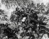 Bitva u Trutnova z 27. června 1866.