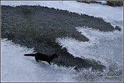 Snímky, na kterých čaruje zima, jsou pořízené v okolí Jilemnice.