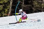 Česká lyžařka Gabriela Capová a Světový pohár v lyžování ve Špindlerově Mlýně.