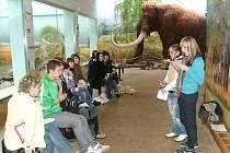 VÝUKOVÝ PROGRAM Africká savana v královédvorské zoo je mezi žáky oblíbený.