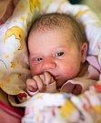 PAVLÍNKA se narodila 14. listopadu v 18.15 hodin Andree Keizlerové a Martinu Horákovi. Vážila 3,21 kilogramu a měřila 51 centimetrů. Doma ve Vrchlabí už čeká i sestřička Bára.