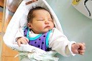 MARTIN PICH se narodil 17. prosince ve 10.36 hodin rodičům Kláře a Martinovi. Vážil 4,33 kg a měřil 53cm. Rodina má domov v Libňatově.