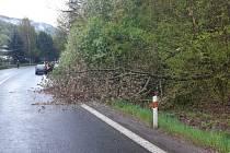 Na silnici spadl strom, havarovala dvě auta.