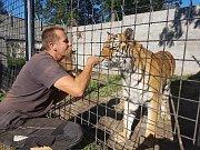 Království Martina Zemana. Majitel středověkého hradu u Žacléře se svým tygrem. Jeho cílem je zřídit v Černé Vodě záchrannou stanici pro ohrožené šelmy.