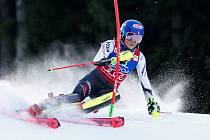 Jedničkou letošní sezony je Američanka Mikaela Shiffrinová. Před osmi lety debutovala ve Světovém poháru, den před svými 16. narozeninami, ve Špindlerově Mlýně. V březnu se tam vrátí v roli velké hvězdy.