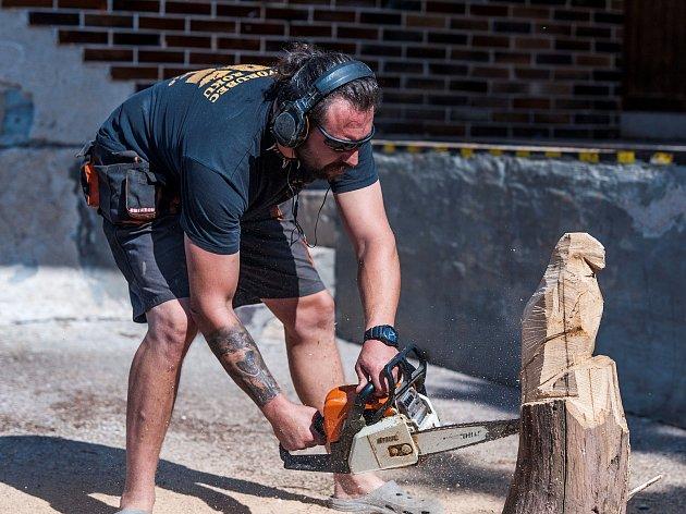 Vlčice obdivovaly umění dřevosochaře.