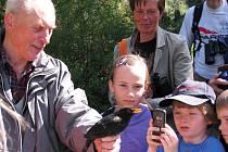 KROUŽKOVÁNÍ PTACTVA se stalo v sobotu součástí procházek ve vrchlabském zámeckém parku. Společně s Janem Grúzem nachytané ptáky vypouštěli diváci zpět do přírody.