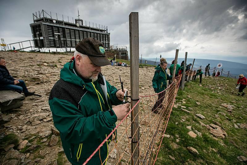 Správa KRNAP instalovala v pátek na Sněžce ochranné sítě.