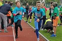World marathon Chalenge 2019