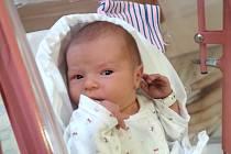 NIKOLA HERMANOVÁ se narodila 18. března ve 20 hodin rodičům Jaroslavě a Janovi. Vážila 2,96 kg a měřila 49 cm. Spolu se sourozenci Anetkou a Janem bydlí ve Starých Bukách.