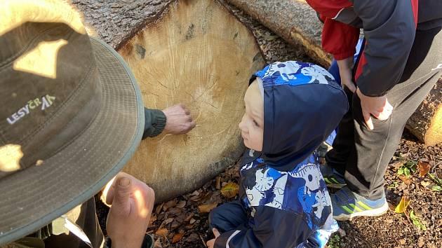 V revíru Království se v sobotu 9. října uskutečnil Malý den za obnovu lesa.