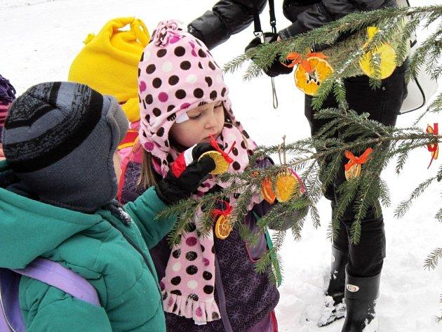 K TRADICÍM VÁNOČNÍ ZOOLOGICKÉ ZAHRADY patří stromky zdobené dětmi.