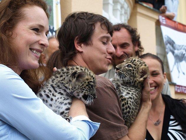Křtiny levhartů v zoo