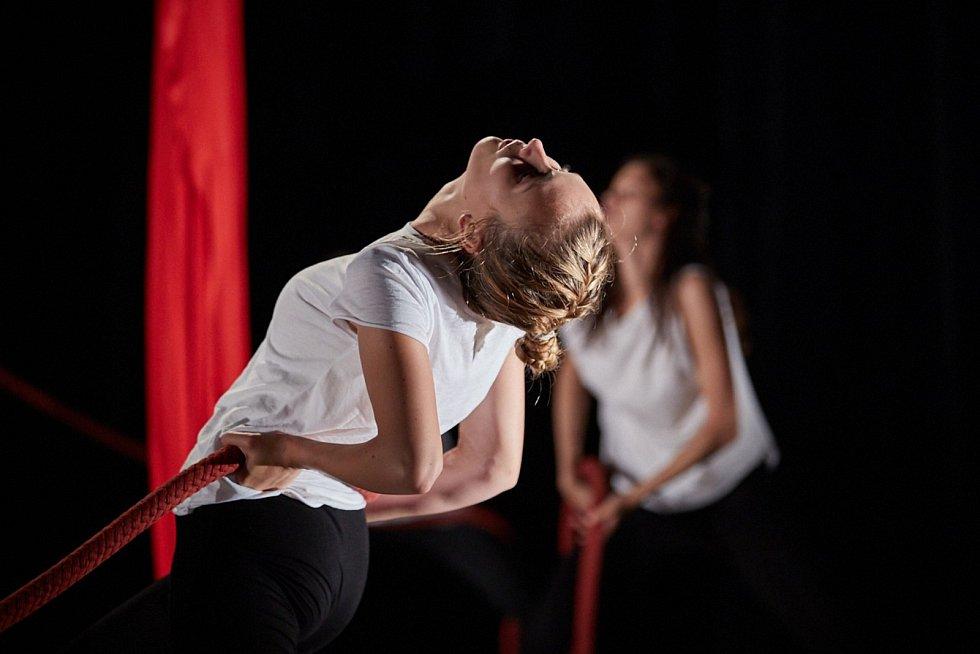 Vyvrcholením Dance festivalu v Trutnově se stalo představení performance Labyrint života v Uffu, která v průběhu festivalových workshopů postupně vznikala. Foto: Miloš Šálek