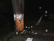 Řidič nepřežil náraz do stromu