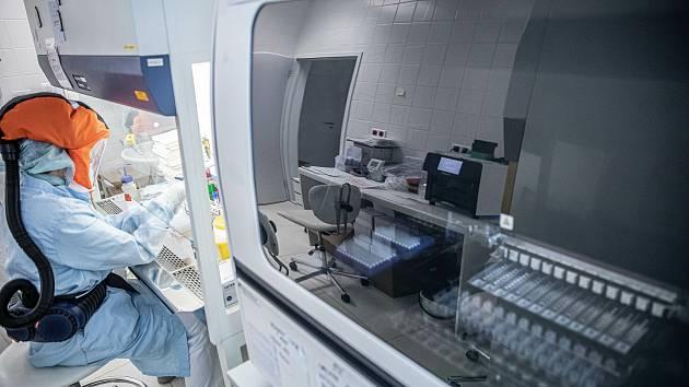 Laboratoř na testování na covid-19 v trutnovské nemocnici.
