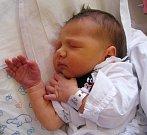 ANNA BERGEROVÁ se narodila 23. ledna ve 13.08 hodin rodičům Michaele a Janovi. Vážila 2,8 kg a měřila 47 cm. Rodina má domov vTrutnově.