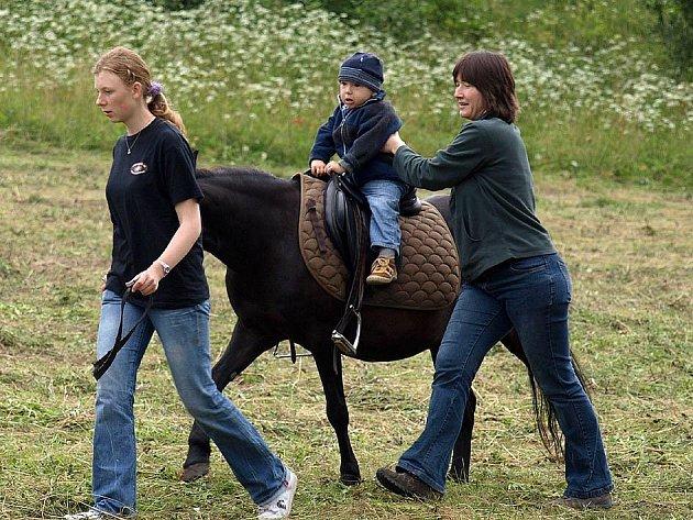 Slavnost koní a řemesel 2009 - stahování dřeva