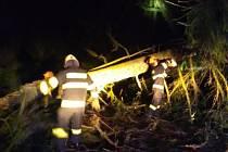 Hasiči zasahovali o víkendu také v Chotěvicích kvůli spadlému stromu.