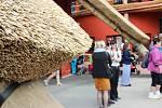 Zoo Dvůr Králové vítá návštěvníky už sedmdesát let