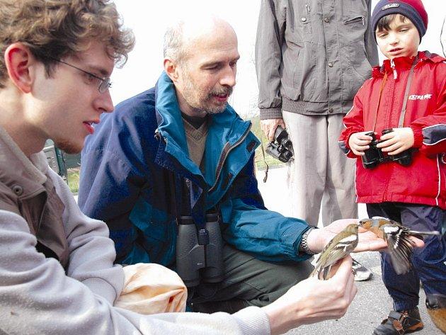Různé druhy drobných ptáků kroužkovali u rybníka ve Vrchlabí pracovníci Správy Krkonošského národního parku. Uprostřed ornitolog Jiří Flousek.