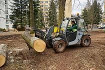Trutnov začal s úpravami lesoparku v Šestidomí.