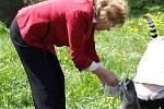 Křest lemurů v královédvorské zoo - krmení na ostrově lemurů
