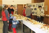 TÉMĚŘ TŘI STOVKY druhů hub si prohlíželi v uplynulých dnech návštěvníci výstavy v Lomnici nad Popelkou.