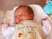 DIANA HYRŠALOVÁ se narodila 7. května v 15.13 hodin rodičům Tereze a Alešovi. Vážila 3,7 kilogramu a měřila 51 centimetrů. Rodina bude mít domov v Miletíně.