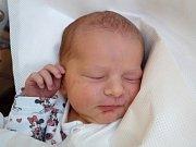 ADÉLKA HOFMANOvÁ se narodila 18. prosince ve 23.17 hodin rodičům Lence a Denisovi. Vážila 3,21 kg a měřila 49 cm. Rodina má domov v Trutnově.