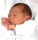 ANNA KRYLOVÁ se narodila 11. září v 13.40 hodin Jindřišce a Radkovi. Vážila 2,97 kilogramu a měřila 47 centimetrů. Rodina bude mít domov v Trutnově.