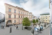 Návrh pěší zóny s javory u Staré radnice.