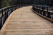Ze stavby mostu ve dvorském Safari parku.