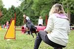 Závody psí agility Podkrkonošské hopsání v Podhůří. Foto: Vojtěch Kohout